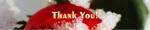 Banner_ThankYou